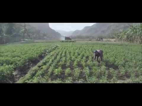Marzuki - Video Musik BagaikanAir