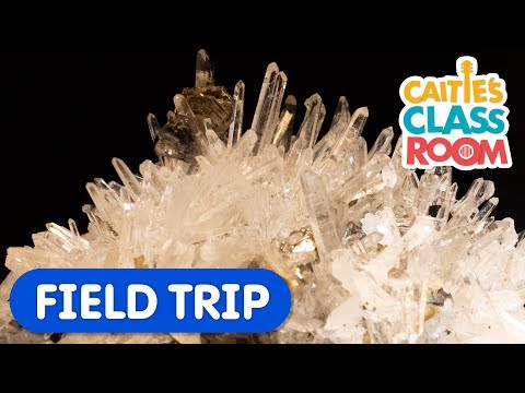 Let's Learn About Rocks and Minerals | Caitie's Classroom | Science  For Kids