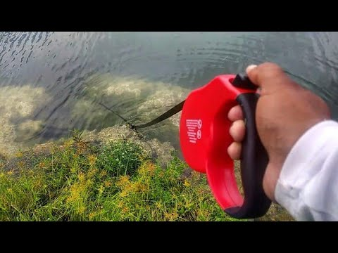 Retractable Dog Leash Catches FISH! DIY thumbnail
