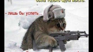 ЛУЧШИЕ ПРИКОЛЫ с котами Самые смешные видео про кошки и коты Подборка приколов 2017.