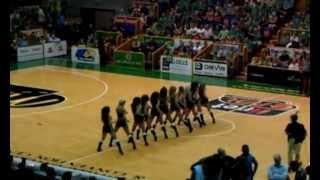 Pitbull - Shake Senora Croc Squad dance routine