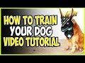 HOW TO TRAIN YOUR DOG! TOP LANE VIDEO TUTORIAL! Cho'Gath vs Nasus Season 9 Ranked Gameplay