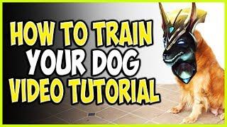 HOW TO TRAIN YOUR DOG! TOP LANE VIDEO TUTORIAL! Cho'Gath vs Nasus Season 9 Ranked Gameplay