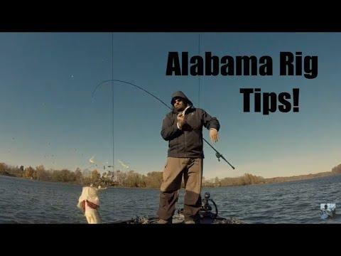Winter Bass Fishing Alabama Rig Tips