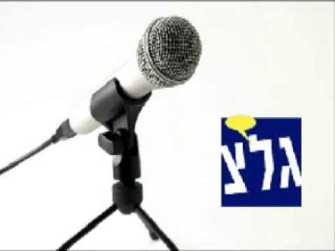 Prof. Gerald Steinberg, Galei Tzahal Radio, July 18, 2013, discussing EU and BDS