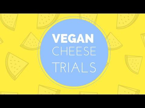Vegan Cheese Trials