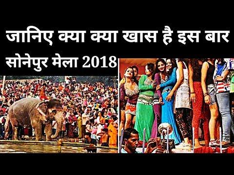 Sonpur Mela 2018 : Chhatra Mela Asia का सबसे बड़ा पशु मेला शुरू, जानिए क्या क्या खास होगा ।