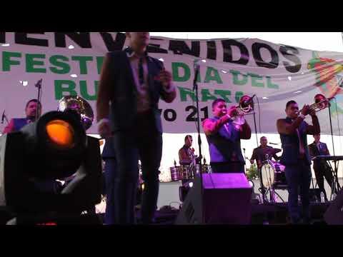 Aunque Me Digas Adiós - Banda Pelillos en Tepic, Nayarit