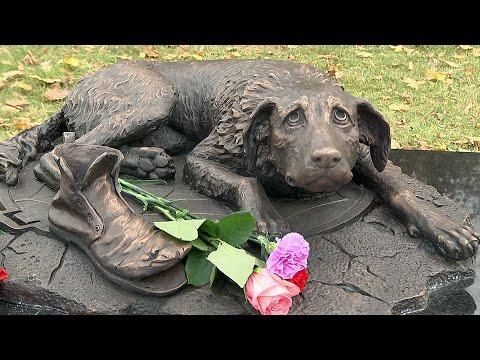 В Москве появился памятник бездомным животным.
