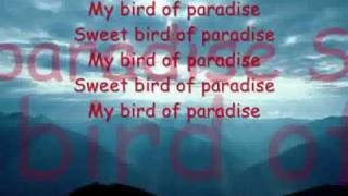 Snowy White - Bird Of Paradise With lyrics
