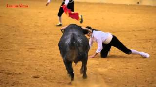 bullfighting funny videos 2016 - most awesome bullfighting festival