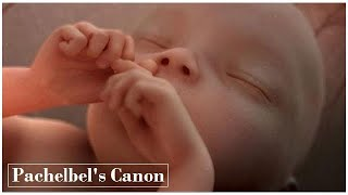 💛 Pachelbel's Canon 💛 Classical music for baby brain development – Relaxing music for baby bedtime