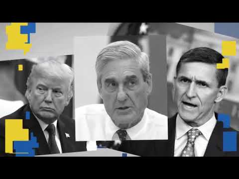 New Mueller Document  Flynn Did Not Act Alone