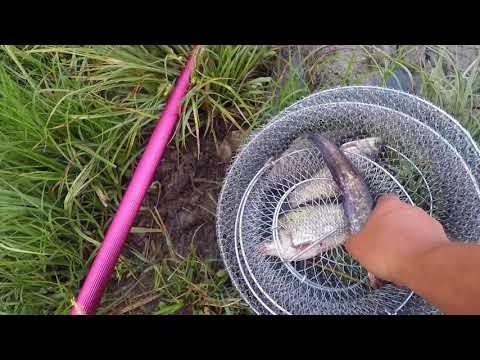 Рыбалка в Крыму 25.05.2018 с.Отрадное Бахчисарайского р-на.