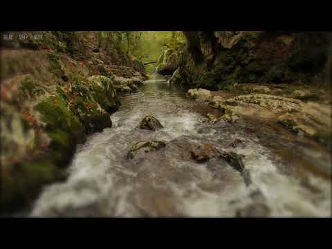 Relaxing Rain & Soothing River Sounds Near a Beautiful Waterfall in the Rocky Mountains - 10 Hrs 4K