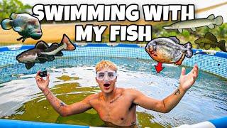 SWIMMING with My OWN BackYard PREDATORY FISH!! *big news*