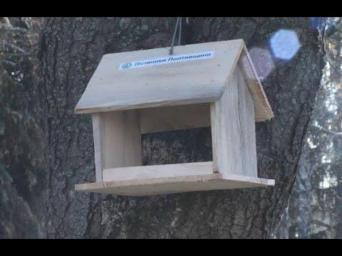 mistotvpoltava: Акція «Нагодуй пташку»