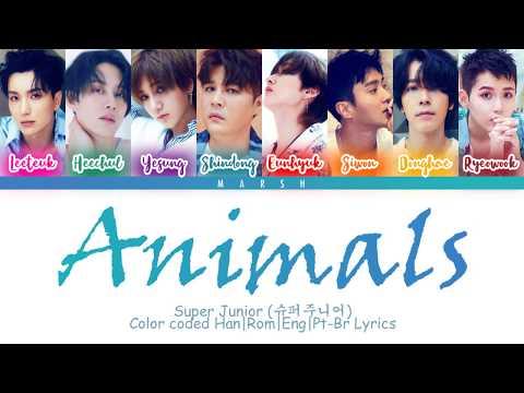 Super Junior ()  Animals (Color Coded Lyrics/Han/Rom/Eng/Pt-Br)