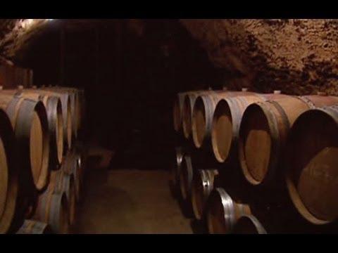 Zoom: Los vinos de Madrid