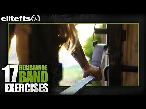 17 Different Exercises W/ Resistance Bands | Elitefts.com