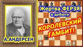 Шахматы ♔ Андерсен ♕ Шахматные ЛОВУШКИ в дебюте Королевский гамбит!