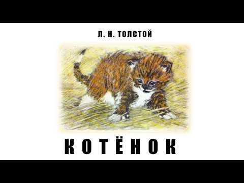 Л. Н. Толстой. Котёнок