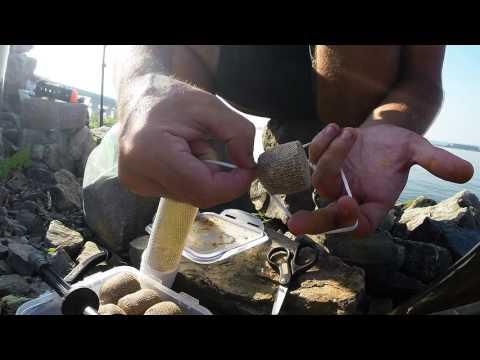Carp Fishing Canada - Hamilton Harbour, Lake Ontario Sep 7 2016