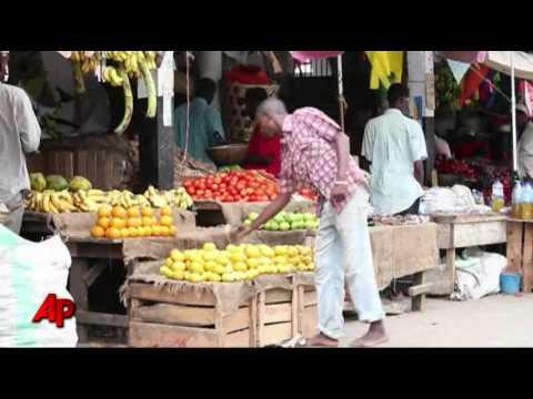 Zanzibar's Rare Monkeys Popular Among Tourists