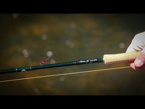 Ashland Fly Shop - Winston Micro Spey Review