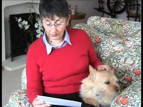 Sunny's Story - Diagnosing and caring for a Norwich Terrier dog with brachycephalic syndrome
