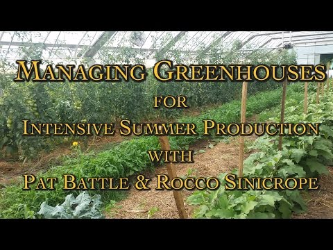 Managing Greenhouses for Intensive Summer Production with Pat Battle & Rocco Sinicrope