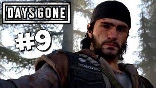 #9 Days Gone (Жизнь после) Прохождение [СТРИМ]