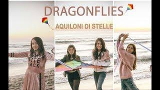 Dragonflies - Aquiloni di stelle (Official Video)