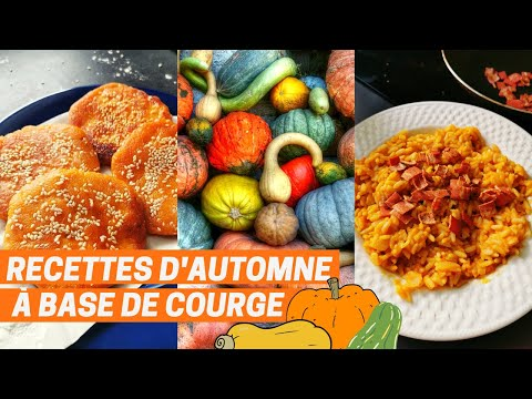 recettes-vegan-d'automne-i-special-courge:-salade-+-risotto-+-gâteaux-i-pumpkin-day-!!
