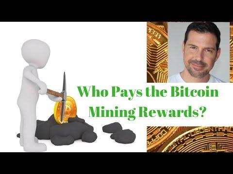 Who Pays the Bitcoin Mining Reward?