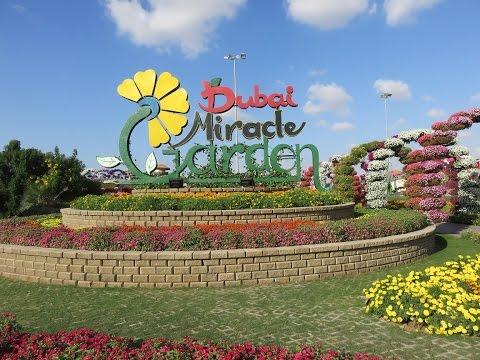 Inside Dubai Miracle Garden 2015-2016
