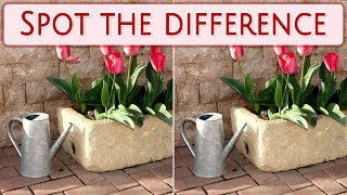 [ Brain games ] ( 3 ) Ep.010 Plants_flowerpot_01 | Spot the difference | photo puzzles | Healing