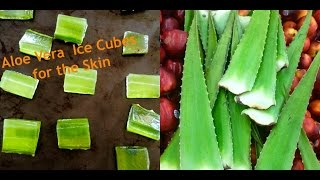 Aloe Vera Ice Cubes for Skin