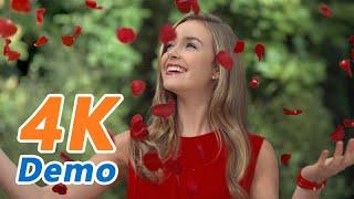 【4K Demo】Samsung 4K Demo Video 3