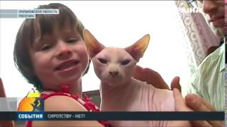 Портал усыновления  Сиротству нет!  Фонда Рината Ахметова объединяет семьи