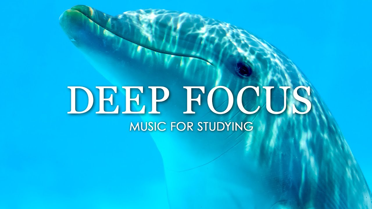 Download Deep Focus Music To Improve Concentration - 12 Hours of Ambient Study Music to Concentrate #137