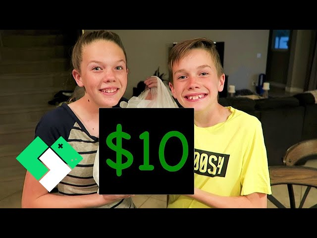$10 Dollar Tree Shopping Challenge | Clintus.tv