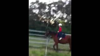 Hannah Roberts rise trot horse riding on alex