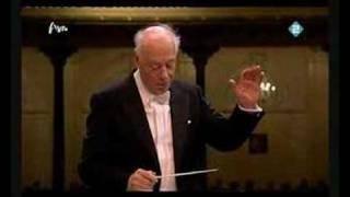 Concertgebouw Orchestra Mahler Symphony No.4 Haitink Eschkenazy - violin solo