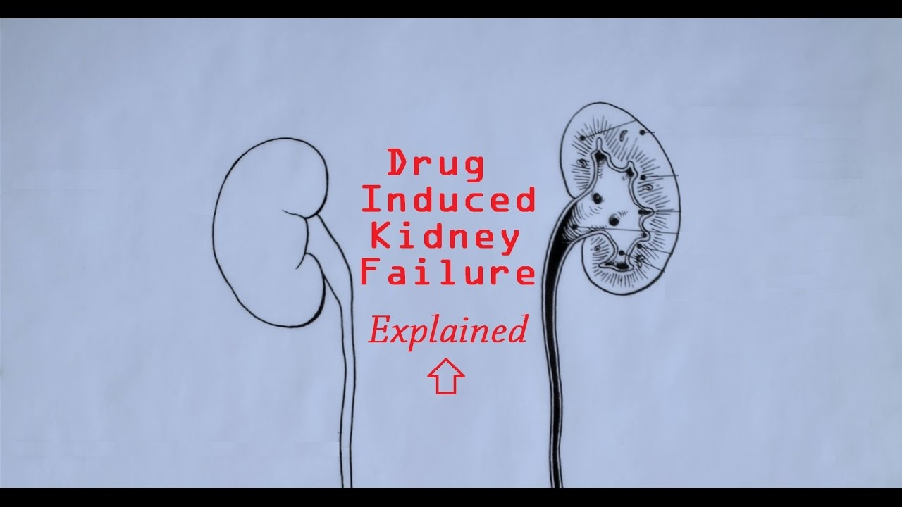 New drug therapy targeting chronic kidney disease