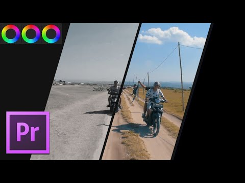 Cara Color Grading Menggunakan LUTs - Tutorial Adobe Premiere Pro Bahasa Indonesia thumbnail