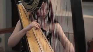 La Belle Noiseuse by Dominic Sewell - Amy Turk, Harp