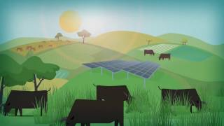 Ukujima Mega Solar Park - Japanese Explainer Video