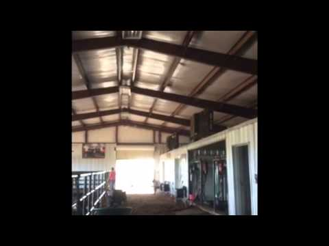 Managing A Show Cattle Barn Youtube