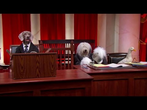 First American Financial Corp. v. Edwards: Oral Argument - November 28, 2011